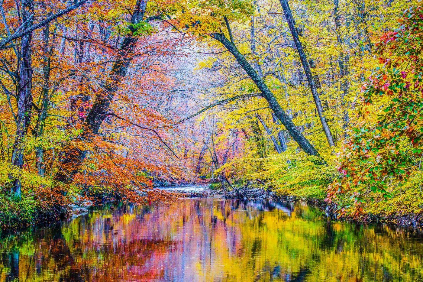 宾州雷德利克里克公园(Ridley creek park),如梦的画面_图1-34