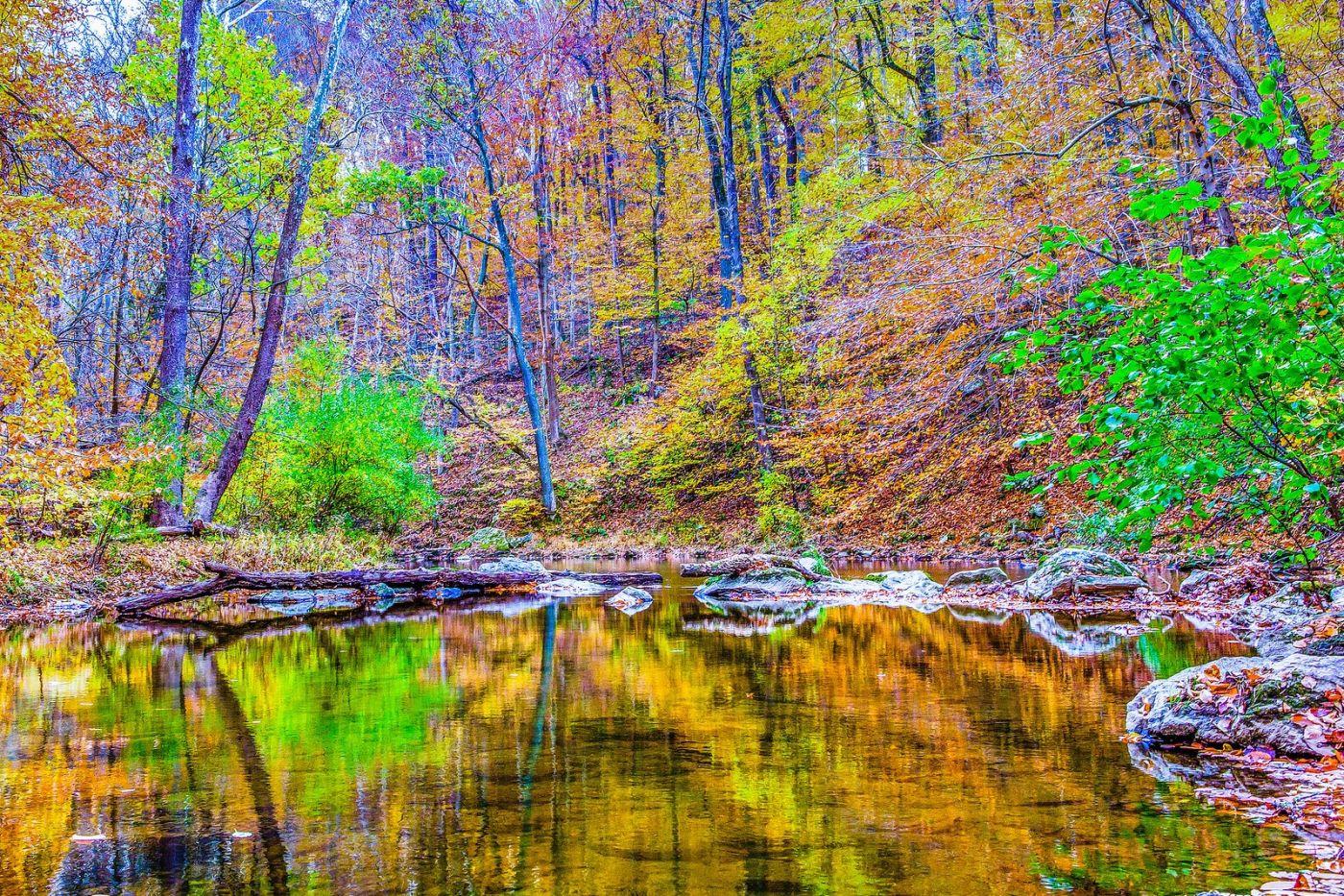 宾州雷德利克里克公园(Ridley creek park),如梦的画面_图1-37