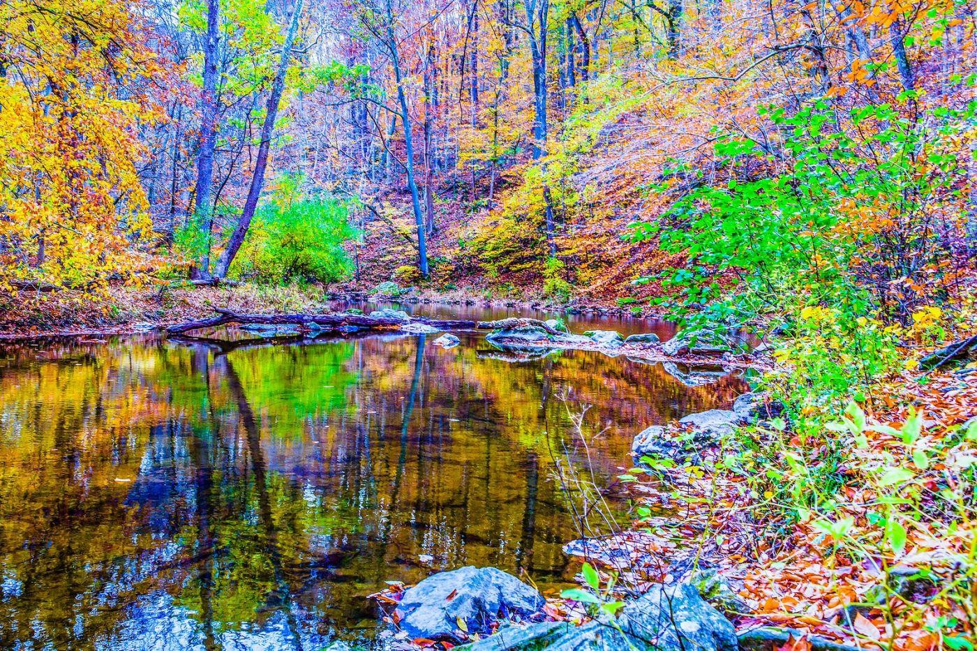 宾州雷德利克里克公园(Ridley creek park),如梦的画面_图1-38