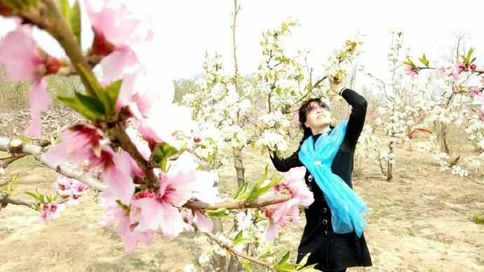 桃花杏花盛开春满园,正是情人约会快乐时,甜蜜约会技巧_图1-2