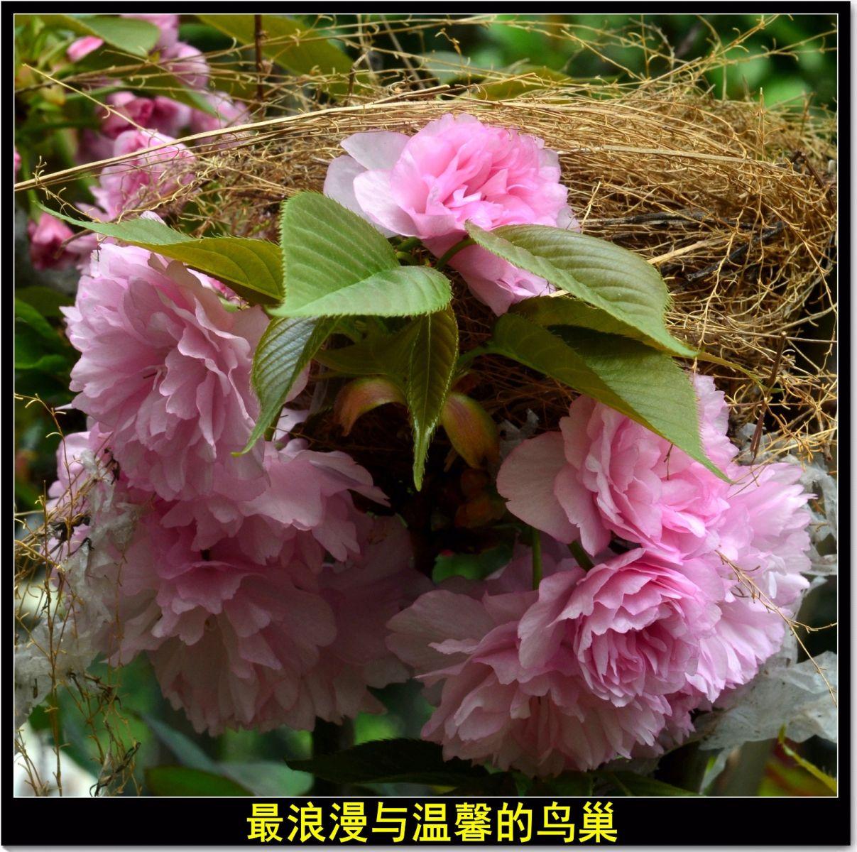 三月三日上巳节(七律)_图1-2