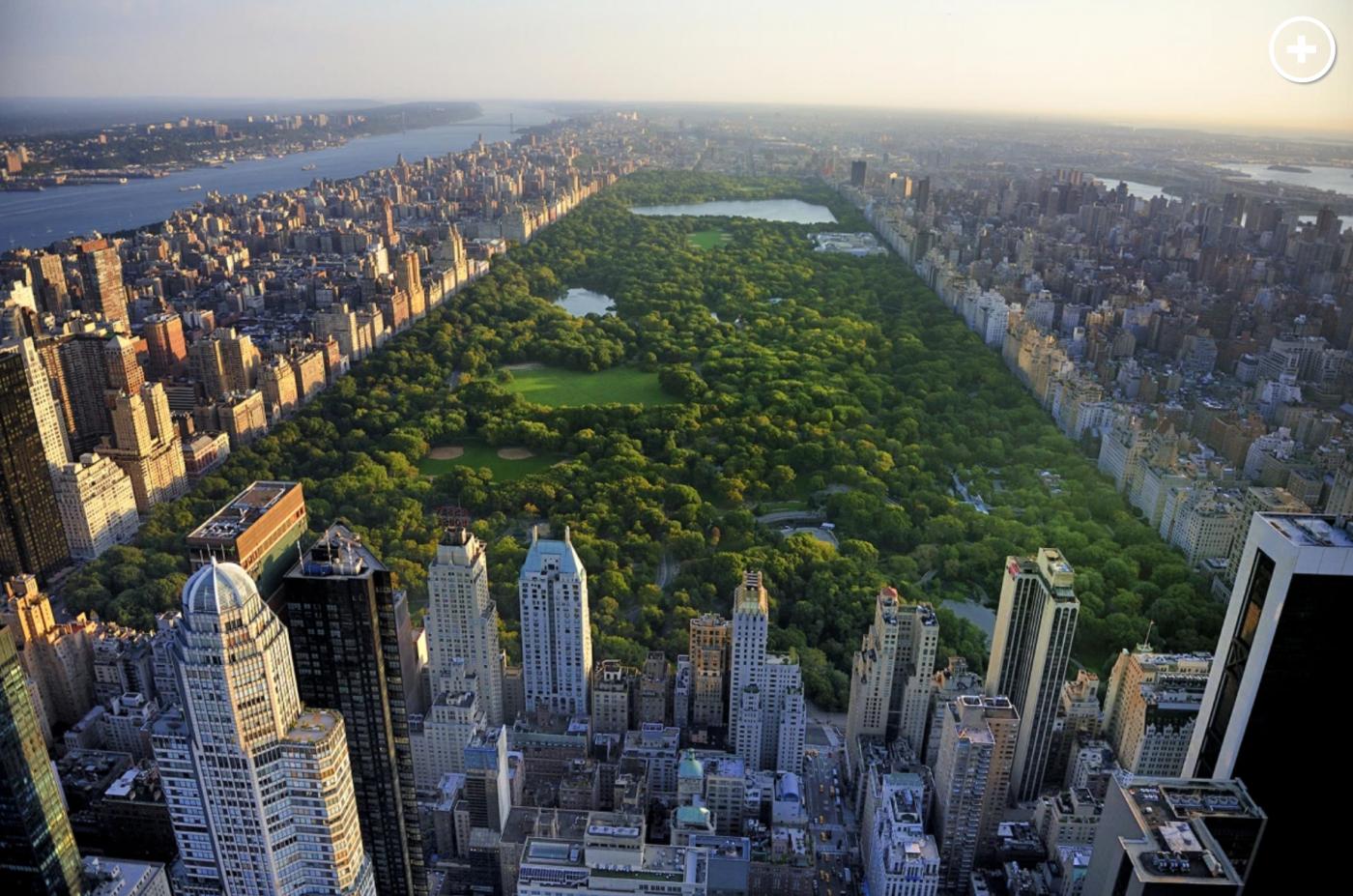 纽约中央公园内2天建成的方舱医院_图1-1