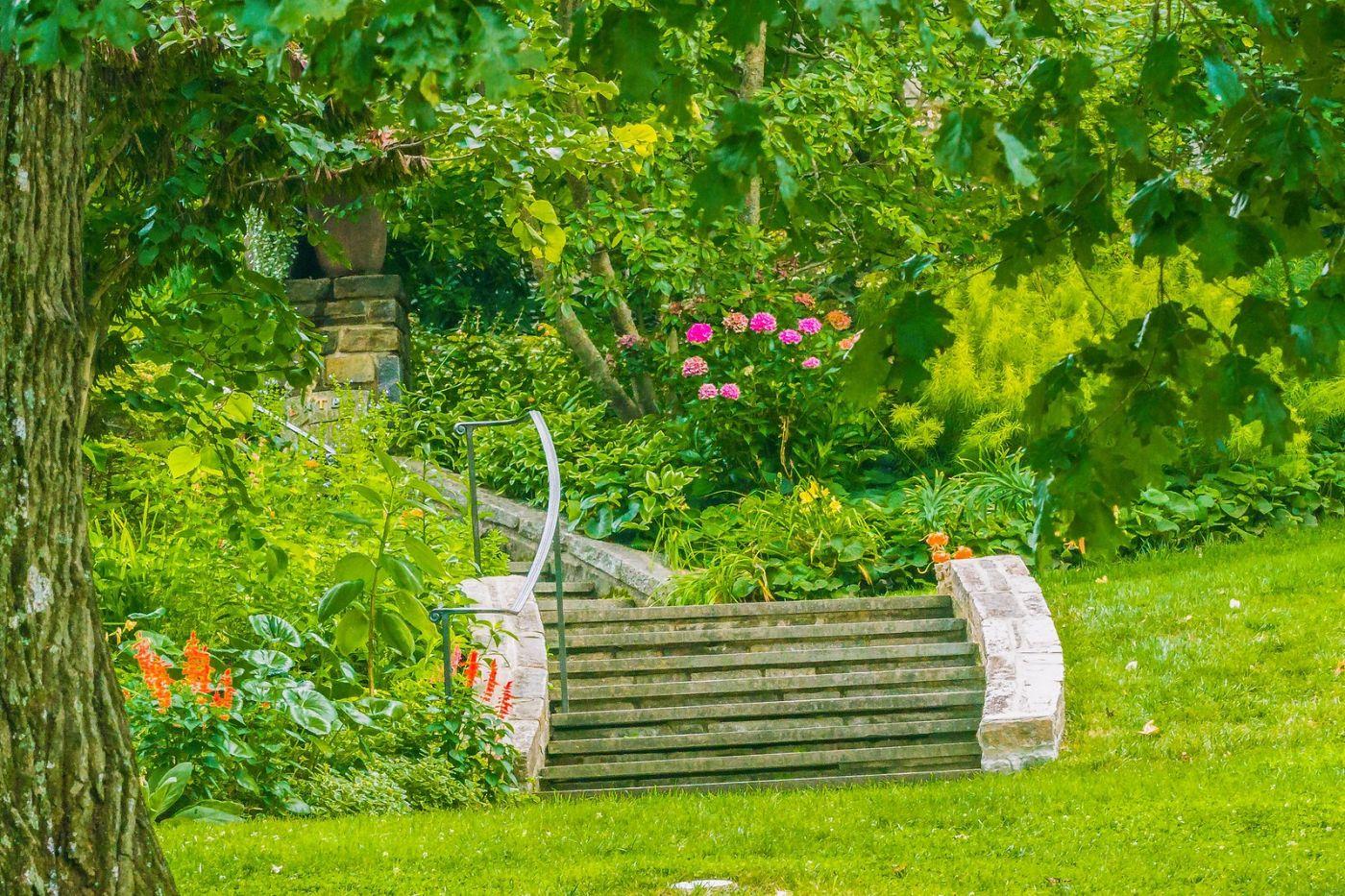 Chanticleer花园,春风得意_图1-34