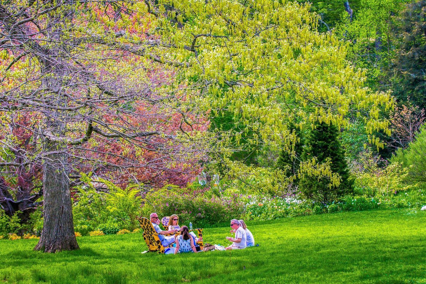 Chanticleer花园,春风得意_图1-27