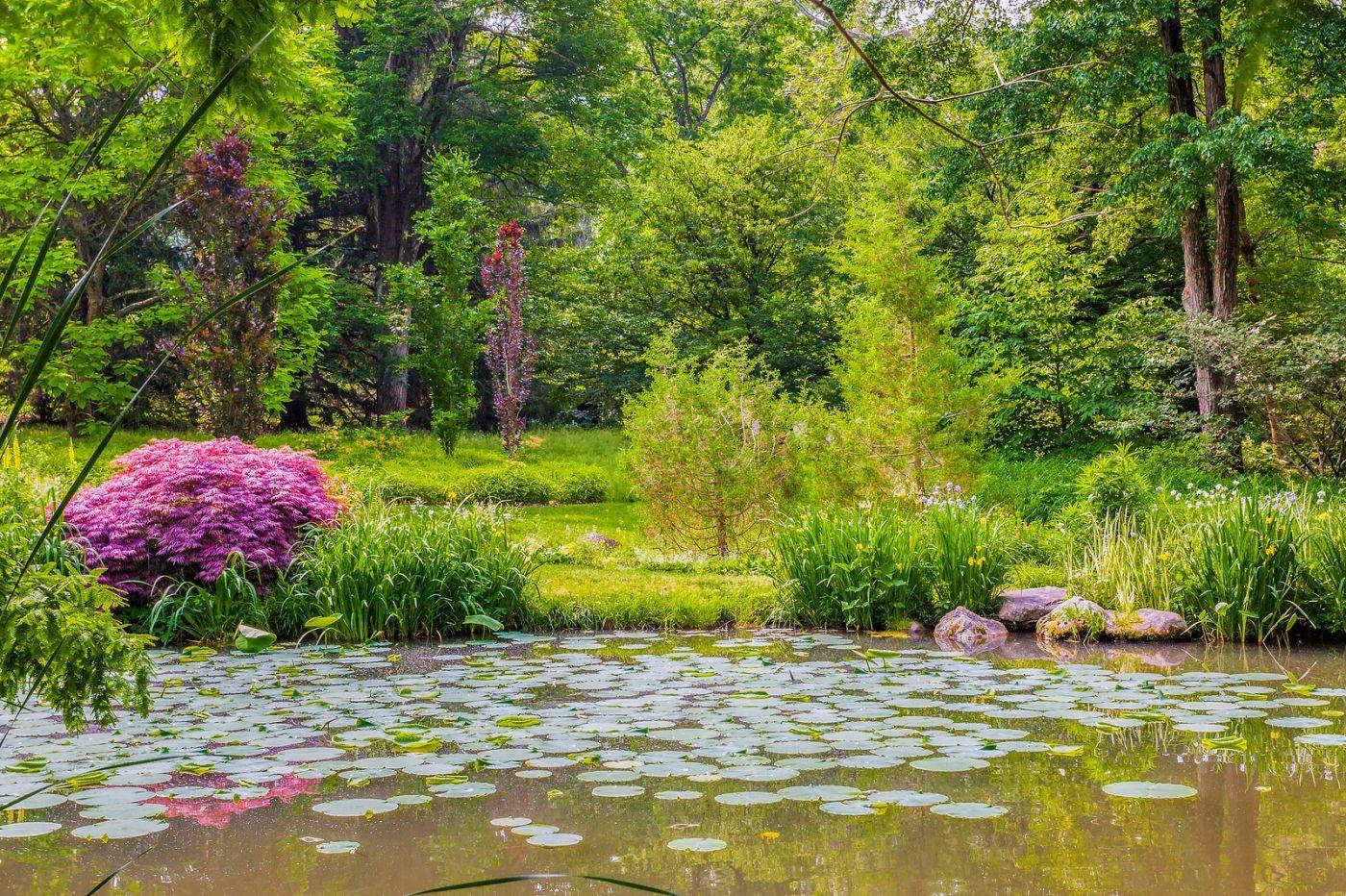 Chanticleer花园,春风得意_图1-4