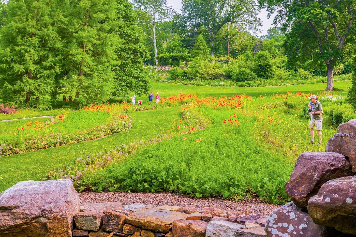 Chanticleer花园,春风得意_图1-3