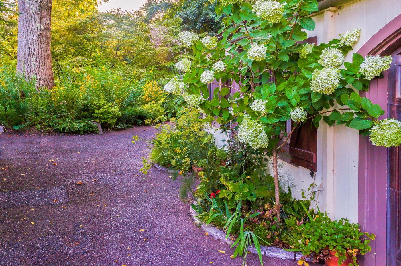 Chanticleer花园,春风得意_图1-14