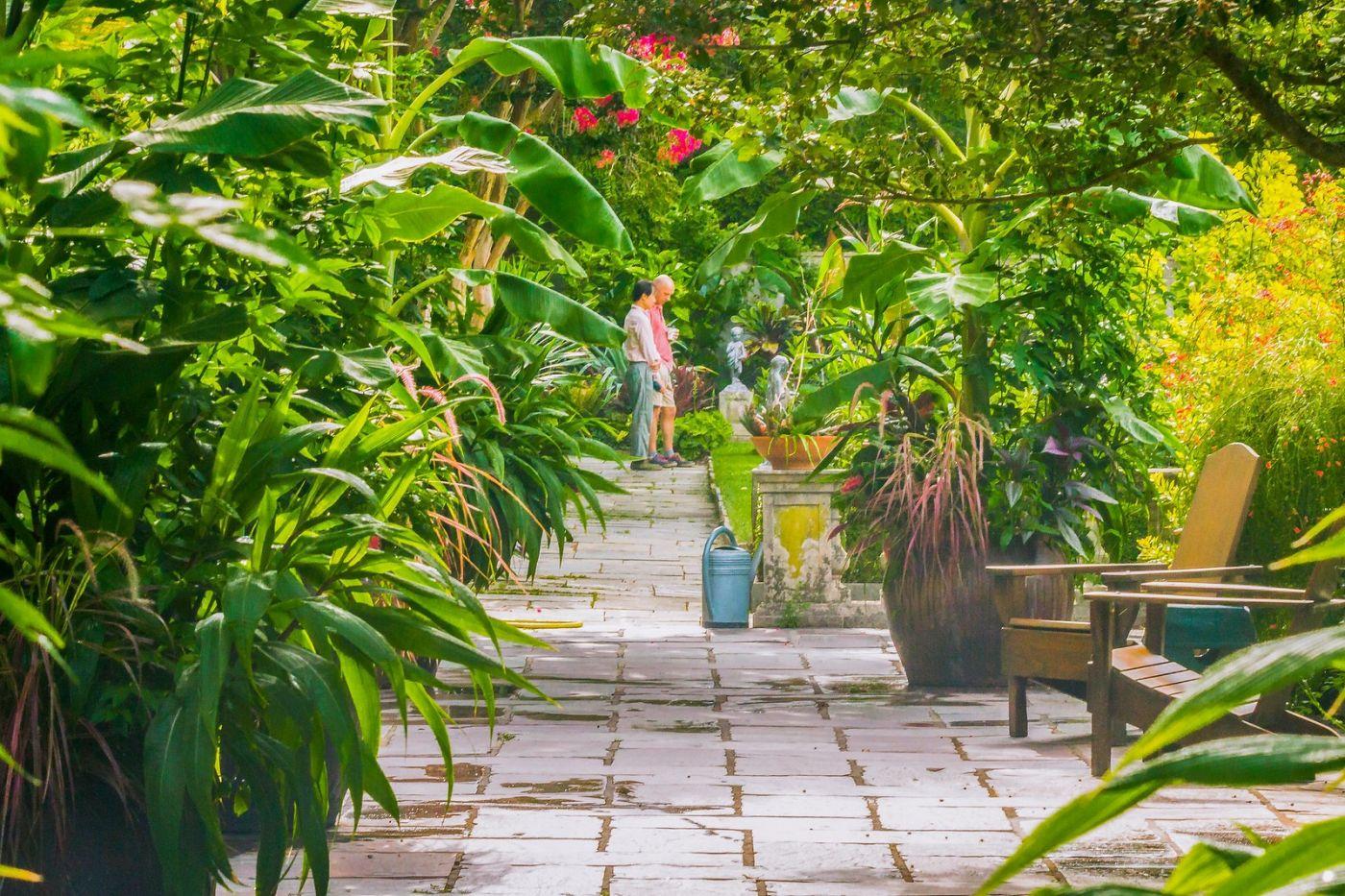 Chanticleer花园,春风得意_图1-13