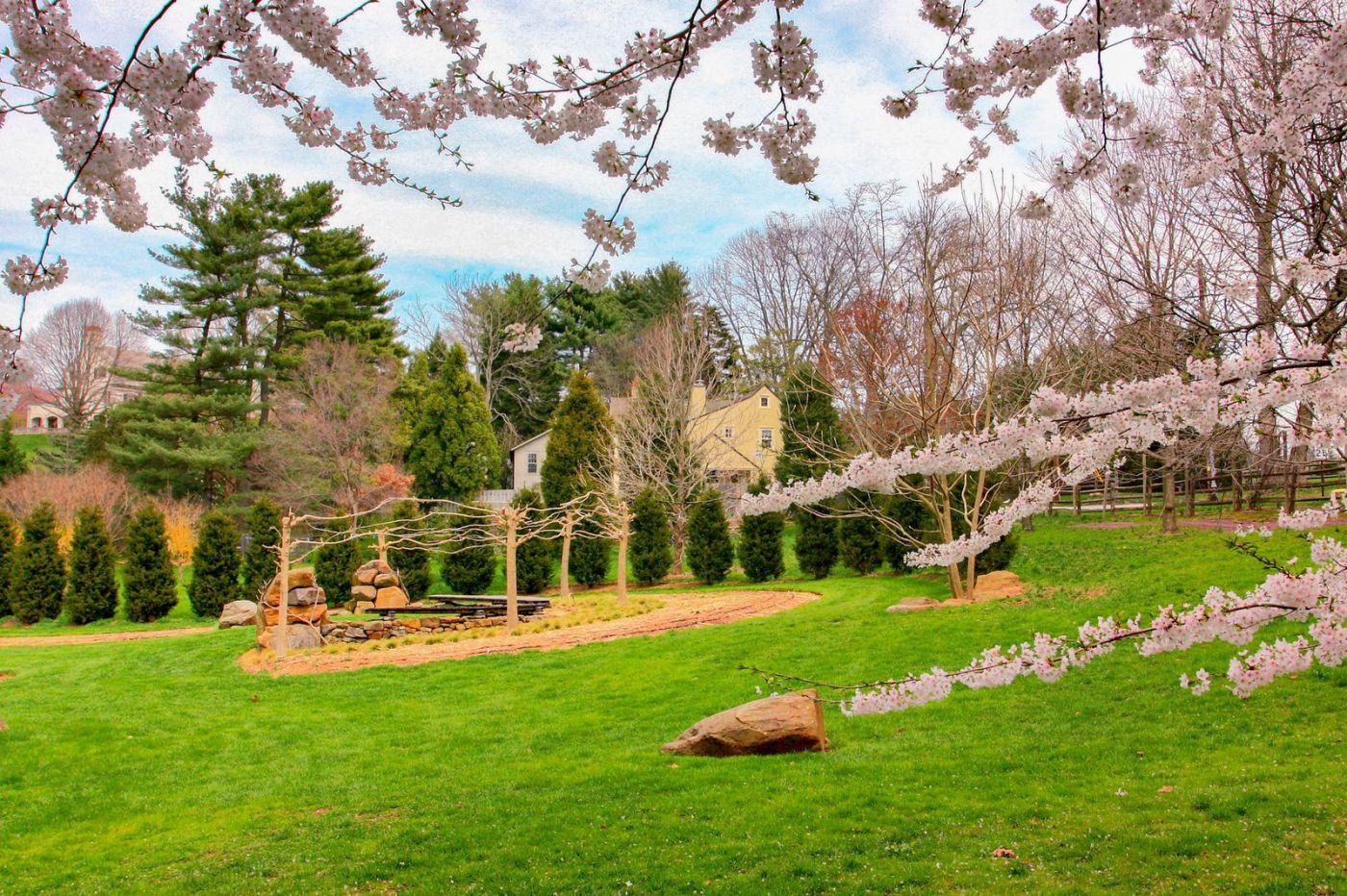 Chanticleer花园,春风得意_图1-24