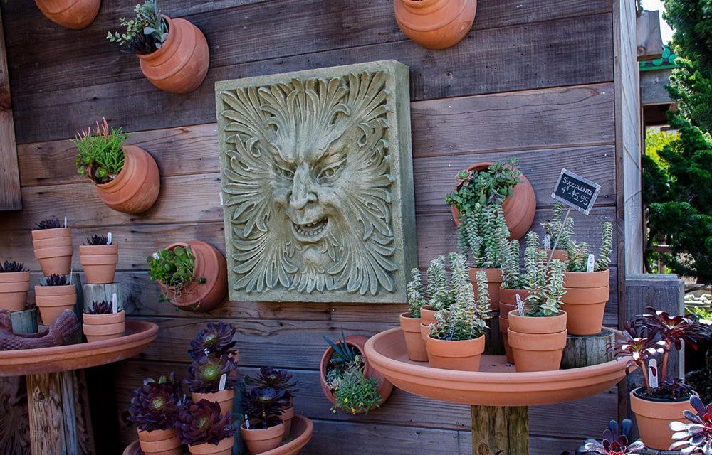 花园画廊_图1-4