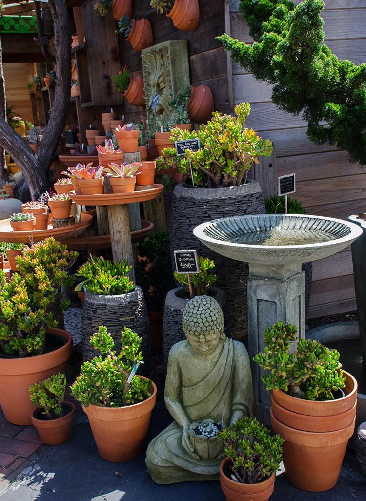 花园画廊_图1-8