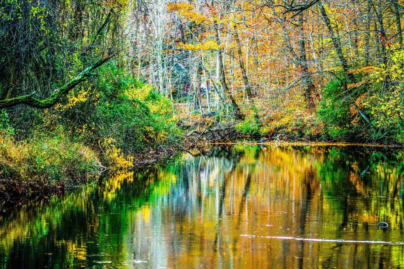 宾州雷德利克里克公园(Ridley creek park),大自然的舞台_图1-7