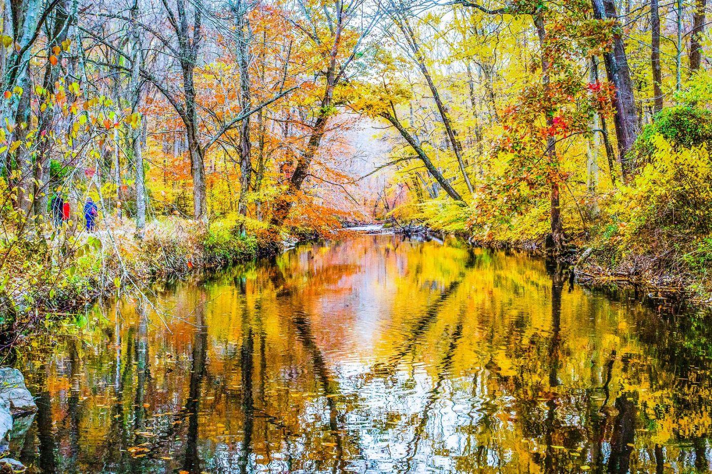 宾州雷德利克里克公园(Ridley creek park),大自然的舞台_图1-6