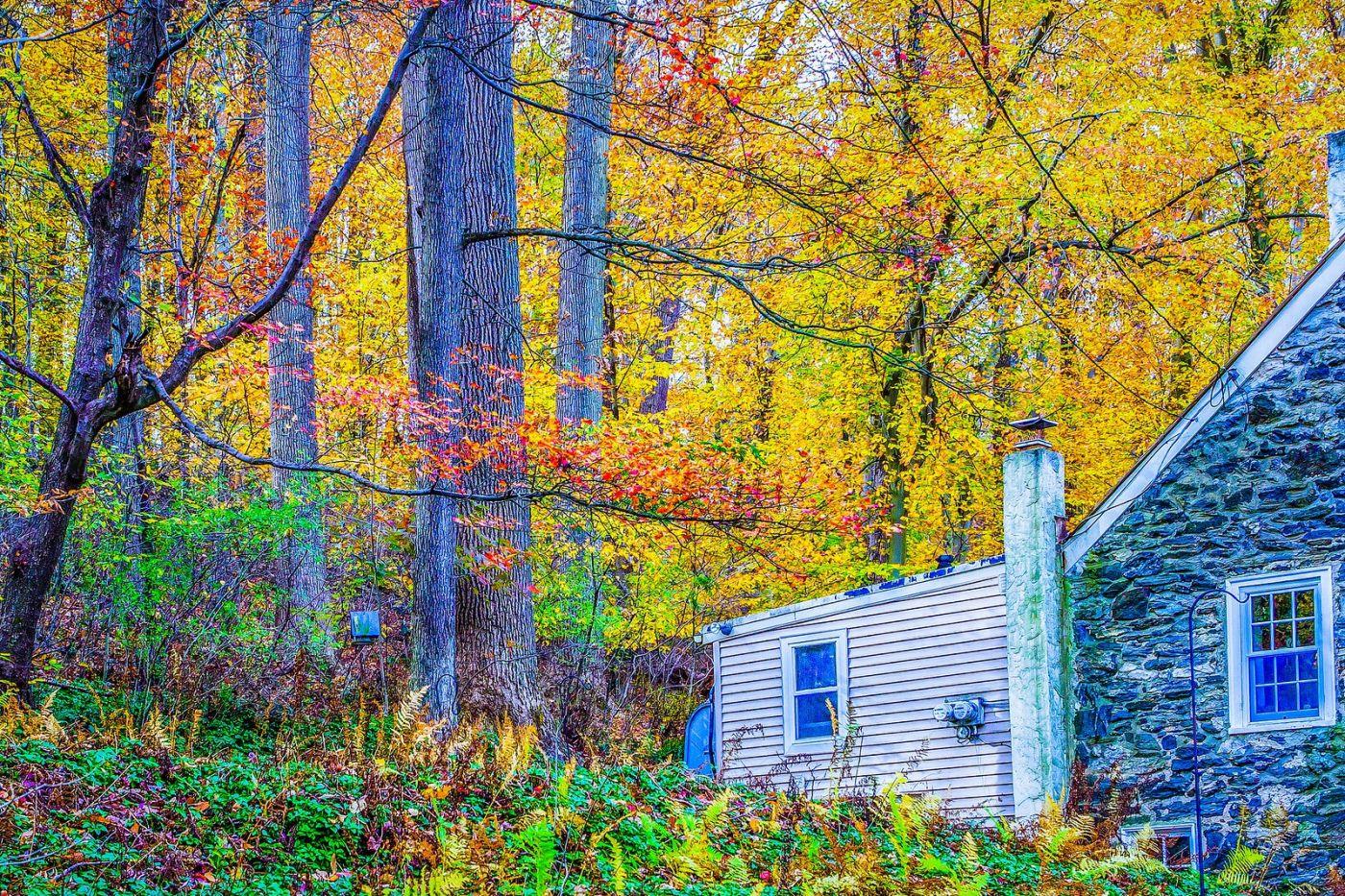 宾州雷德利克里克公园(Ridley creek park),大自然的舞台_图1-10