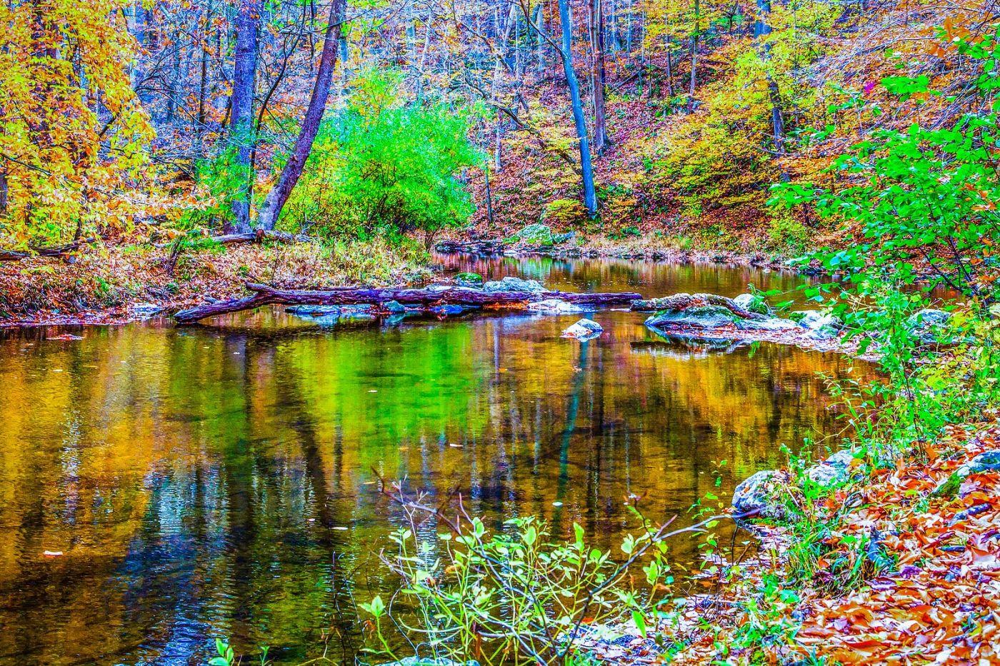 宾州雷德利克里克公园(Ridley creek park),大自然的舞台_图1-12