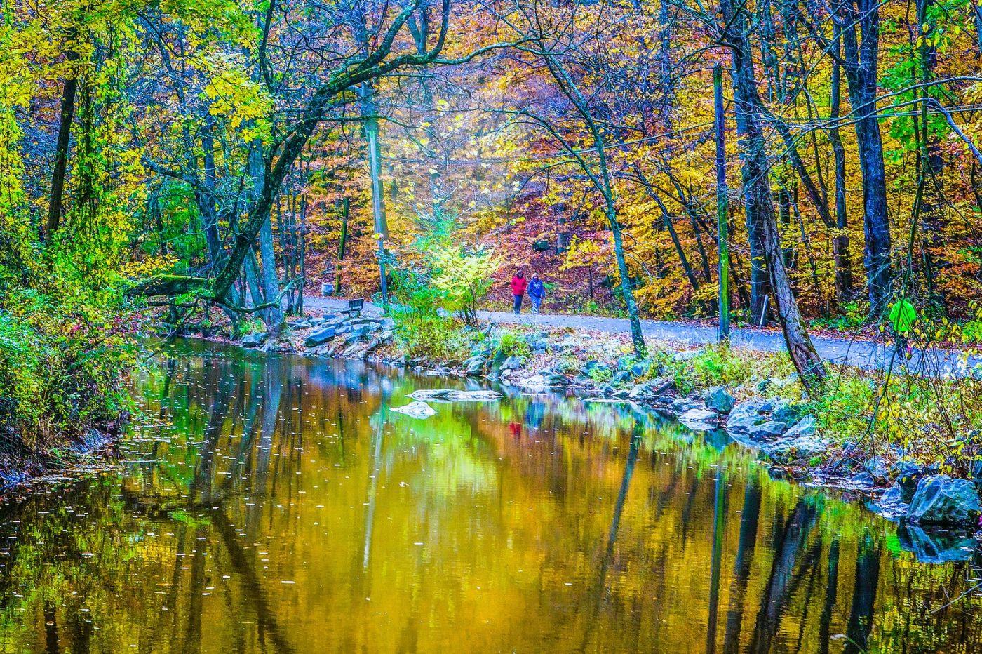 宾州雷德利克里克公园(Ridley creek park),大自然的舞台_图1-15