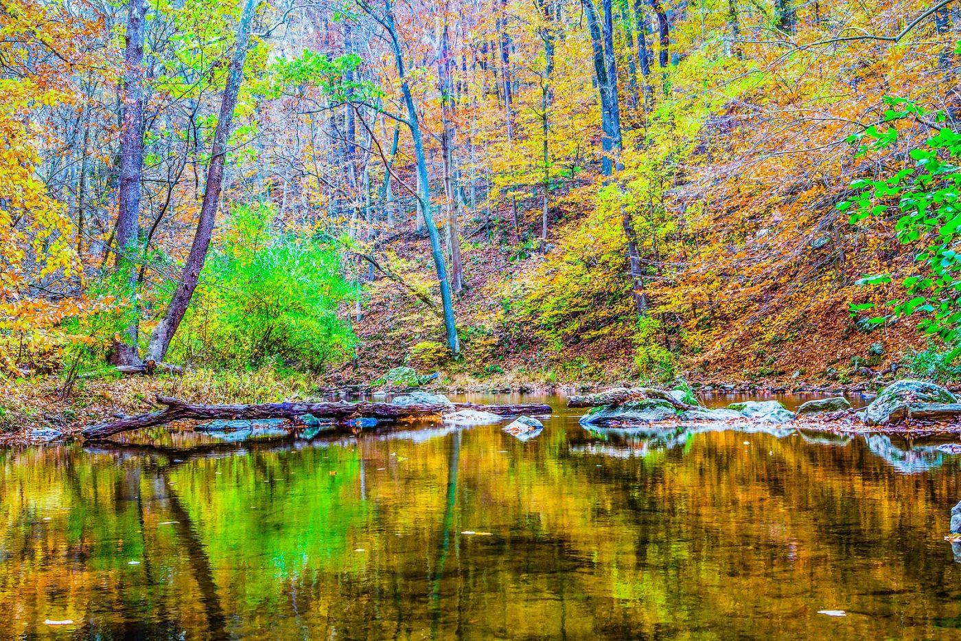 宾州雷德利克里克公园(Ridley creek park),大自然的舞台_图1-16