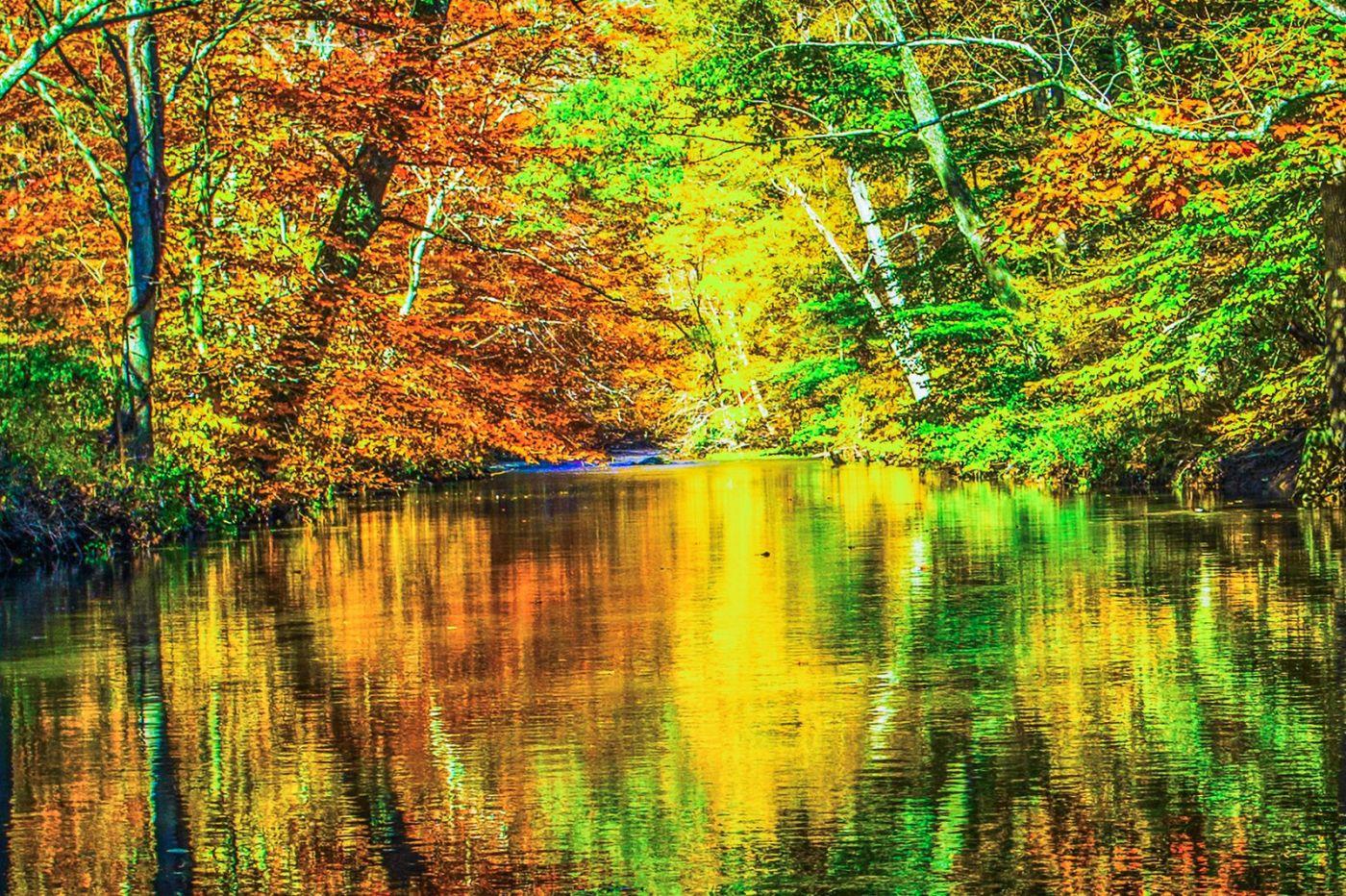 宾州雷德利克里克公园(Ridley creek park),大自然的舞台_图1-19
