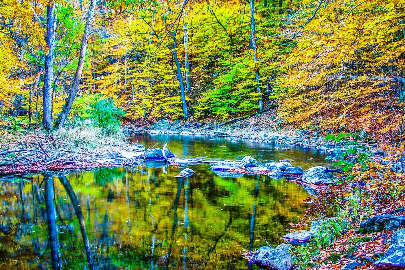 宾州雷德利克里克公园(Ridley creek park),大自然的舞台_图1-22