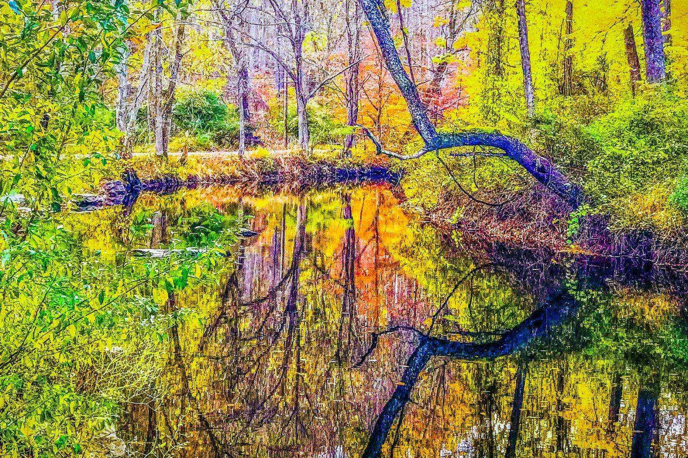 宾州雷德利克里克公园(Ridley creek park),大自然的舞台_图1-28