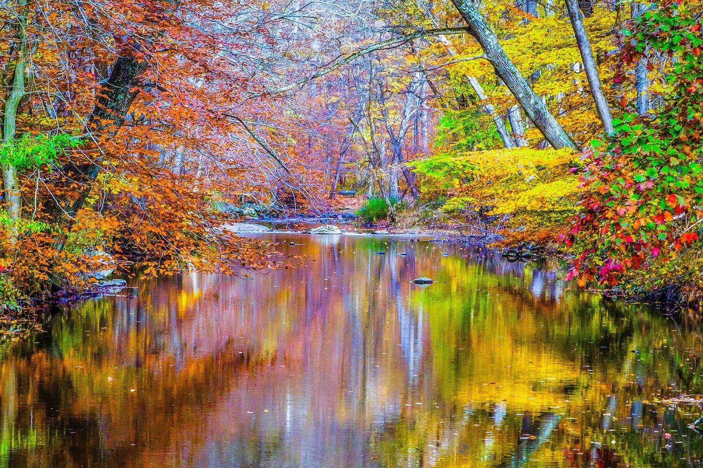 宾州雷德利克里克公园(Ridley creek park),大自然的舞台_图1-27