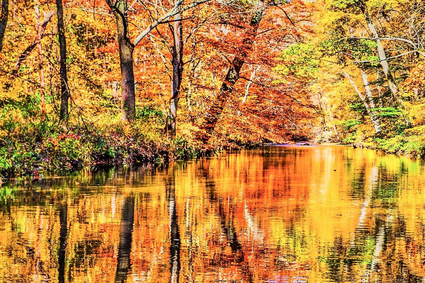 宾州雷德利克里克公园(Ridley creek park),大自然的舞台_图1-26