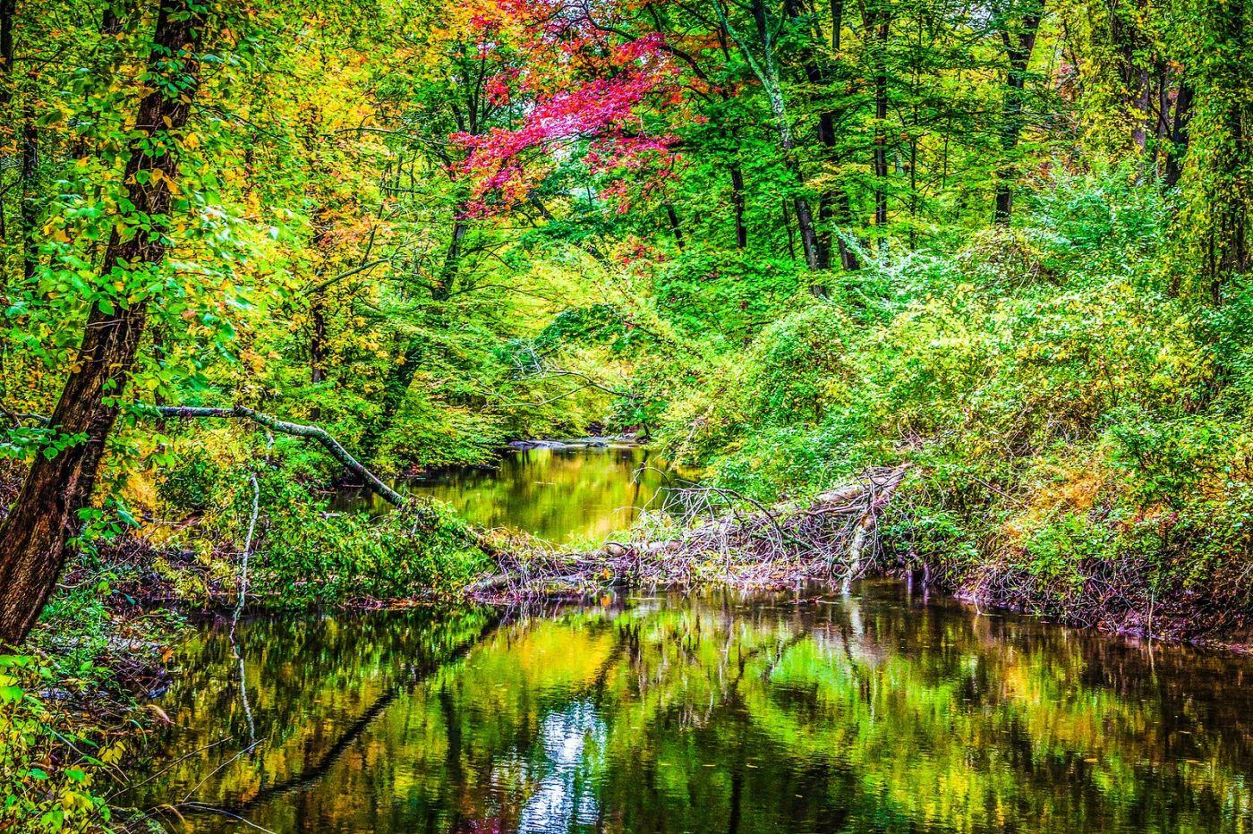 宾州雷德利克里克公园(Ridley creek park),大自然的舞台_图1-30