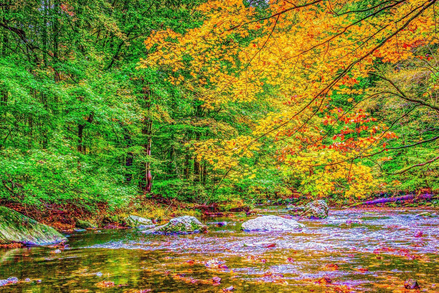 宾州雷德利克里克公园(Ridley creek park),大自然的舞台_图1-31
