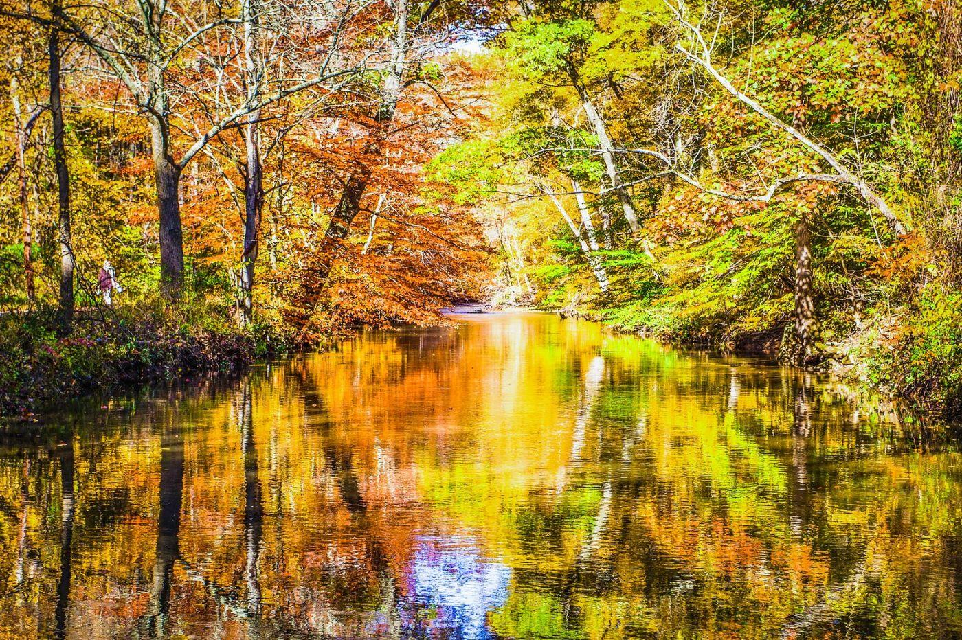 宾州雷德利克里克公园(Ridley creek park),大自然的舞台_图1-36