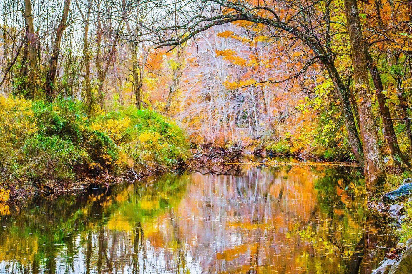 宾州雷德利克里克公园(Ridley creek park),大自然的舞台_图1-32