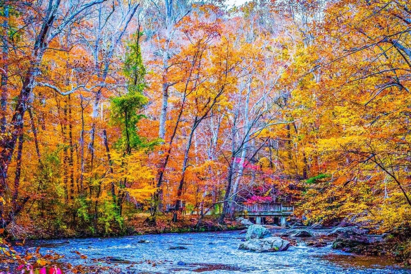 宾州雷德利克里克公园(Ridley creek park),大自然的舞台_图1-35