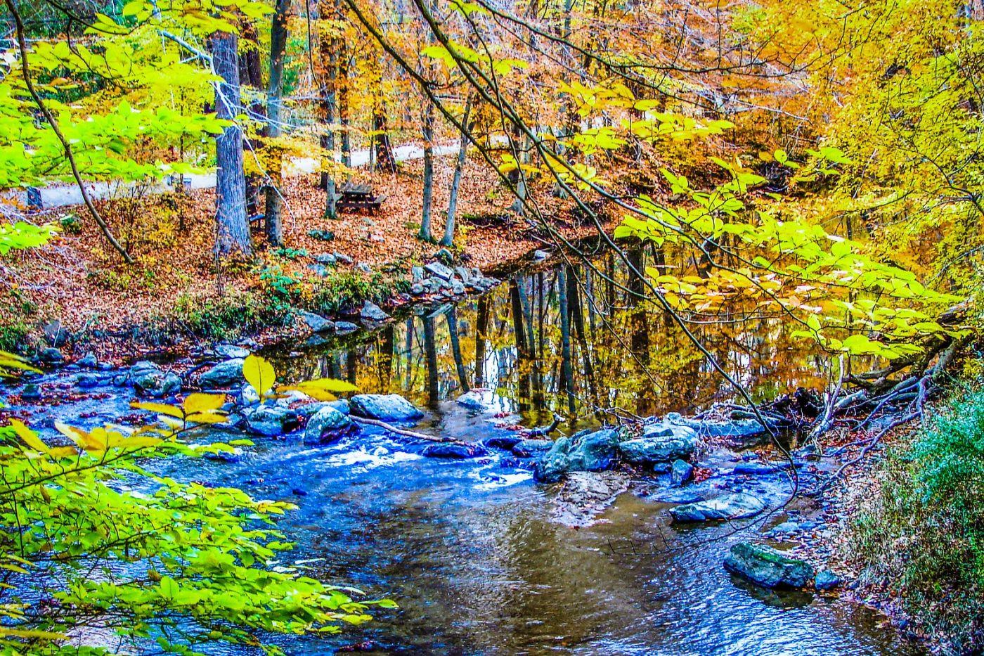 宾州雷德利克里克公园(Ridley creek park),大自然的舞台_图1-38