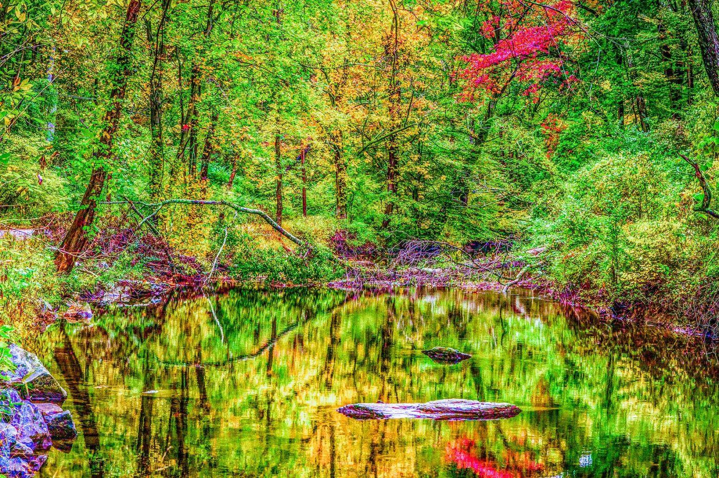 宾州雷德利克里克公园(Ridley creek park),大自然的舞台_图1-40