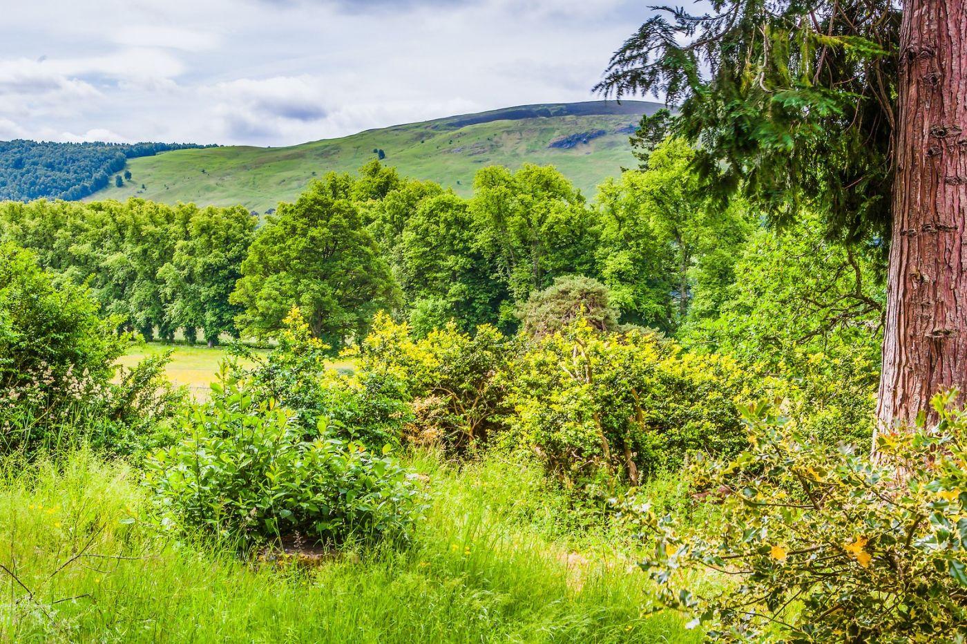 苏格兰布莱尔城堡(Blair Castle),环境优美_图1-9