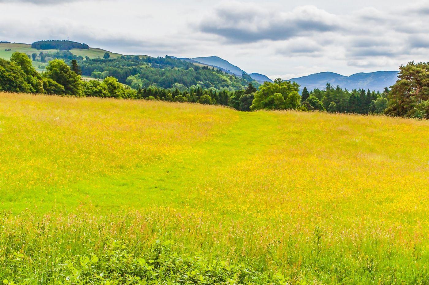 苏格兰布莱尔城堡(Blair Castle),环境优美_图1-6