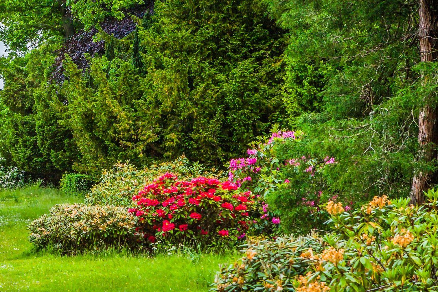 苏格兰布莱尔城堡(Blair Castle),环境优美_图1-19