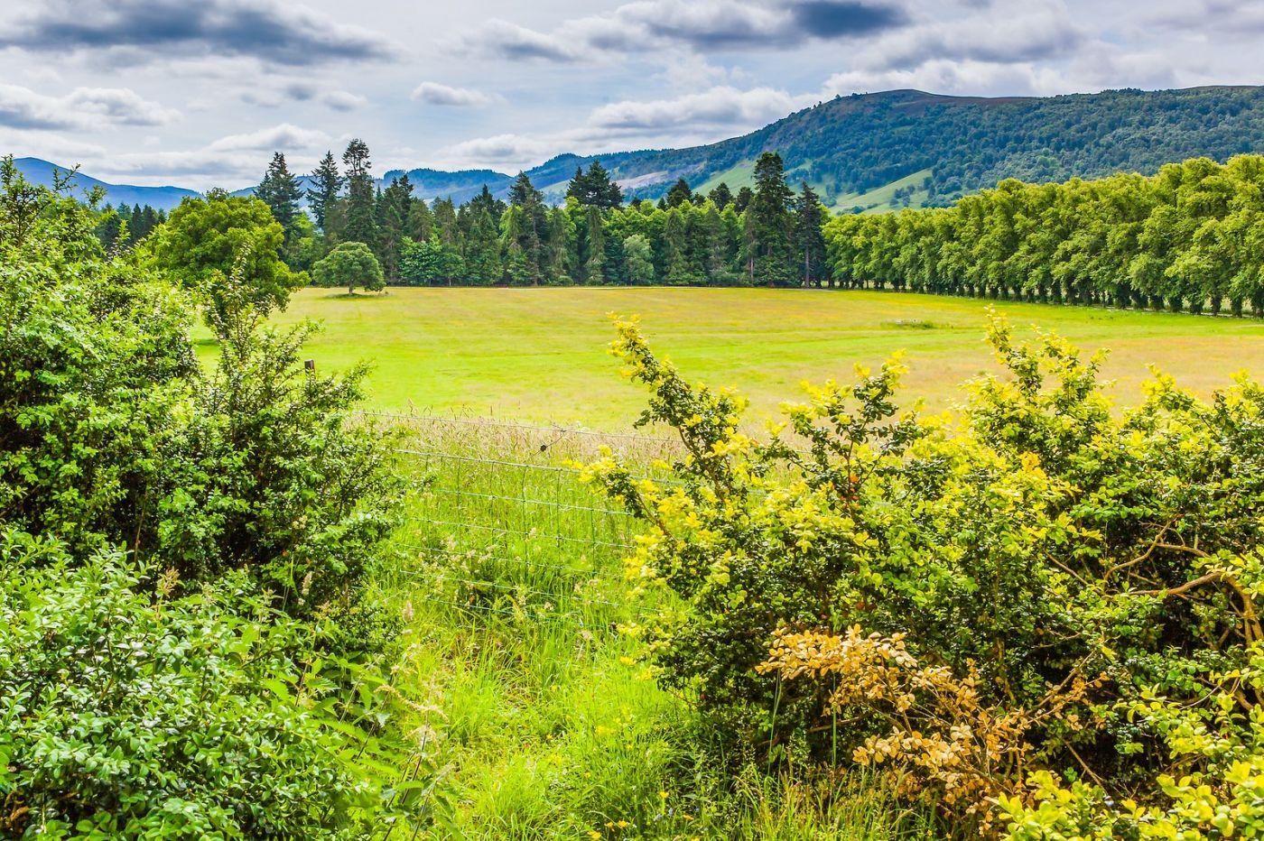 苏格兰布莱尔城堡(Blair Castle),环境优美_图1-22