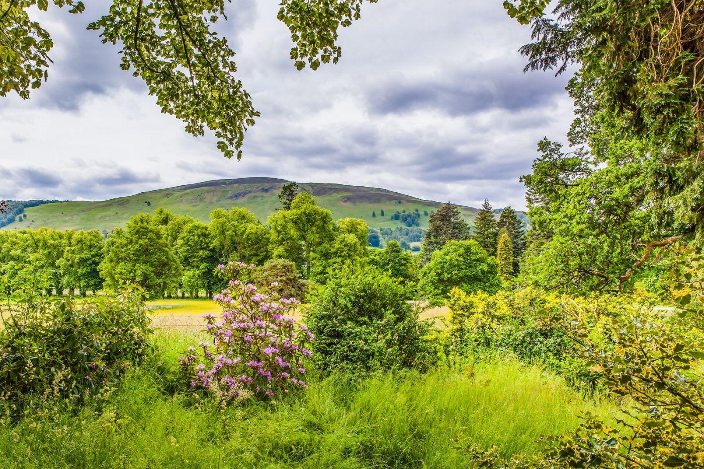 苏格兰布莱尔城堡(Blair Castle),环境优美_图1-21