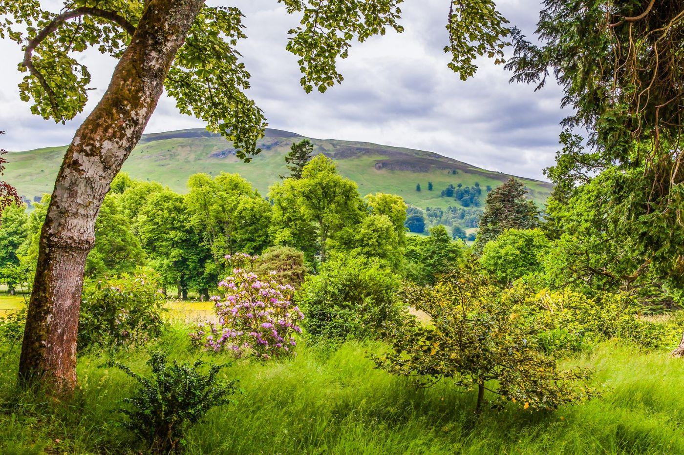 苏格兰布莱尔城堡(Blair Castle),环境优美_图1-32