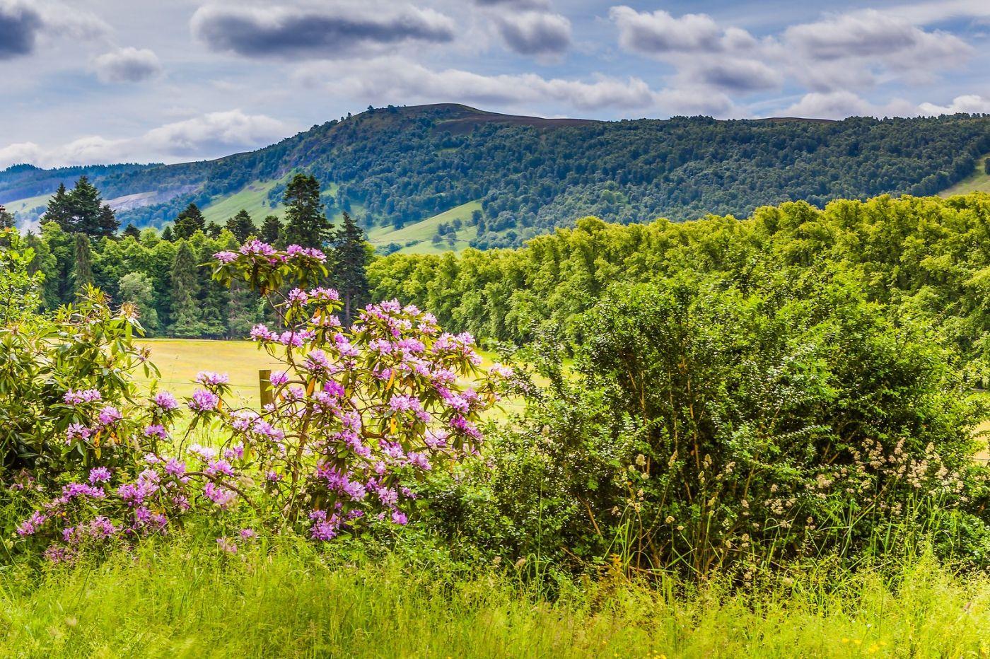 苏格兰布莱尔城堡(Blair Castle),环境优美_图1-34