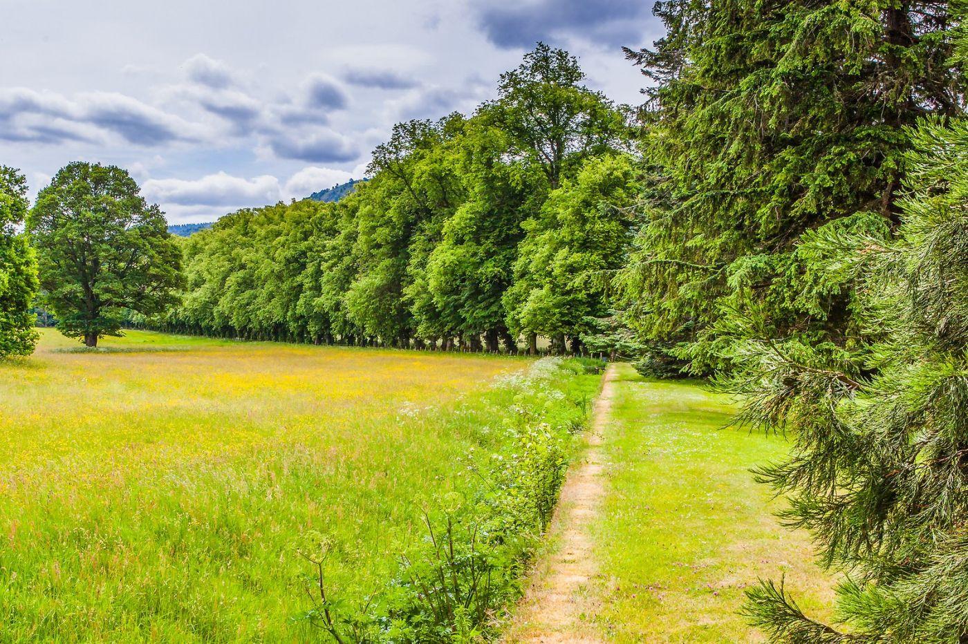 苏格兰布莱尔城堡(Blair Castle),环境优美_图1-36