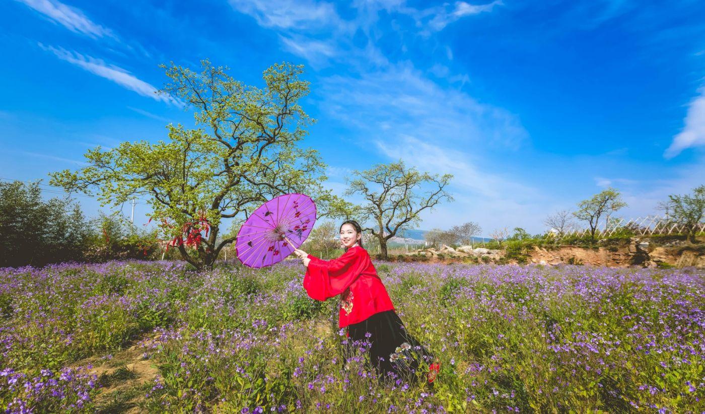 这个春天有点美 汉服仙子下凡尘 抓紧来临沂踏青赏花拍片片_图1-1