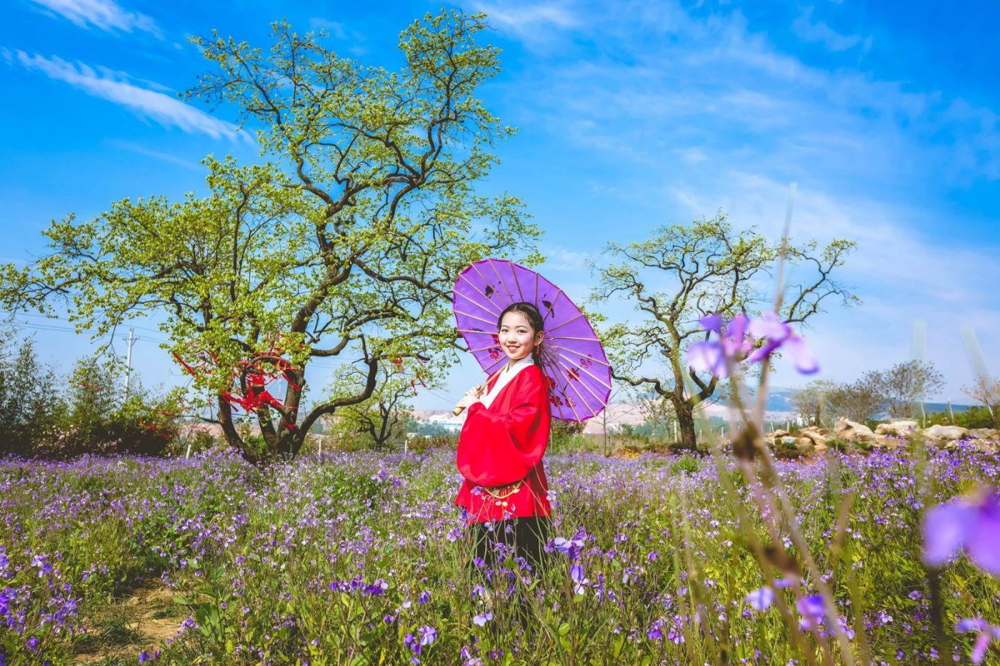 这个春天有点美 汉服仙子下凡尘 抓紧来临沂踏青赏花拍片片_图1-2