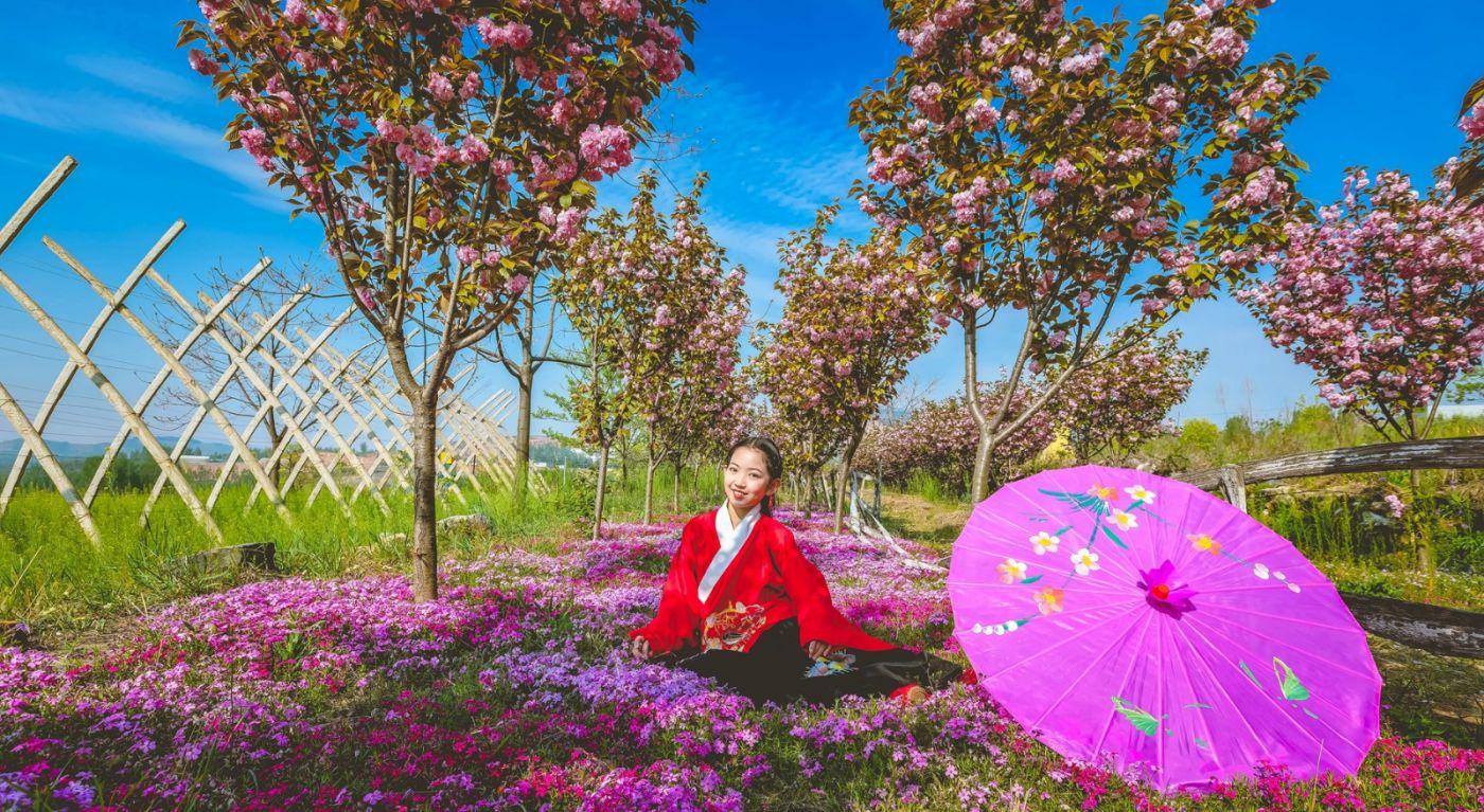 这个春天有点美 汉服仙子下凡尘 抓紧来临沂踏青赏花拍片片_图1-3