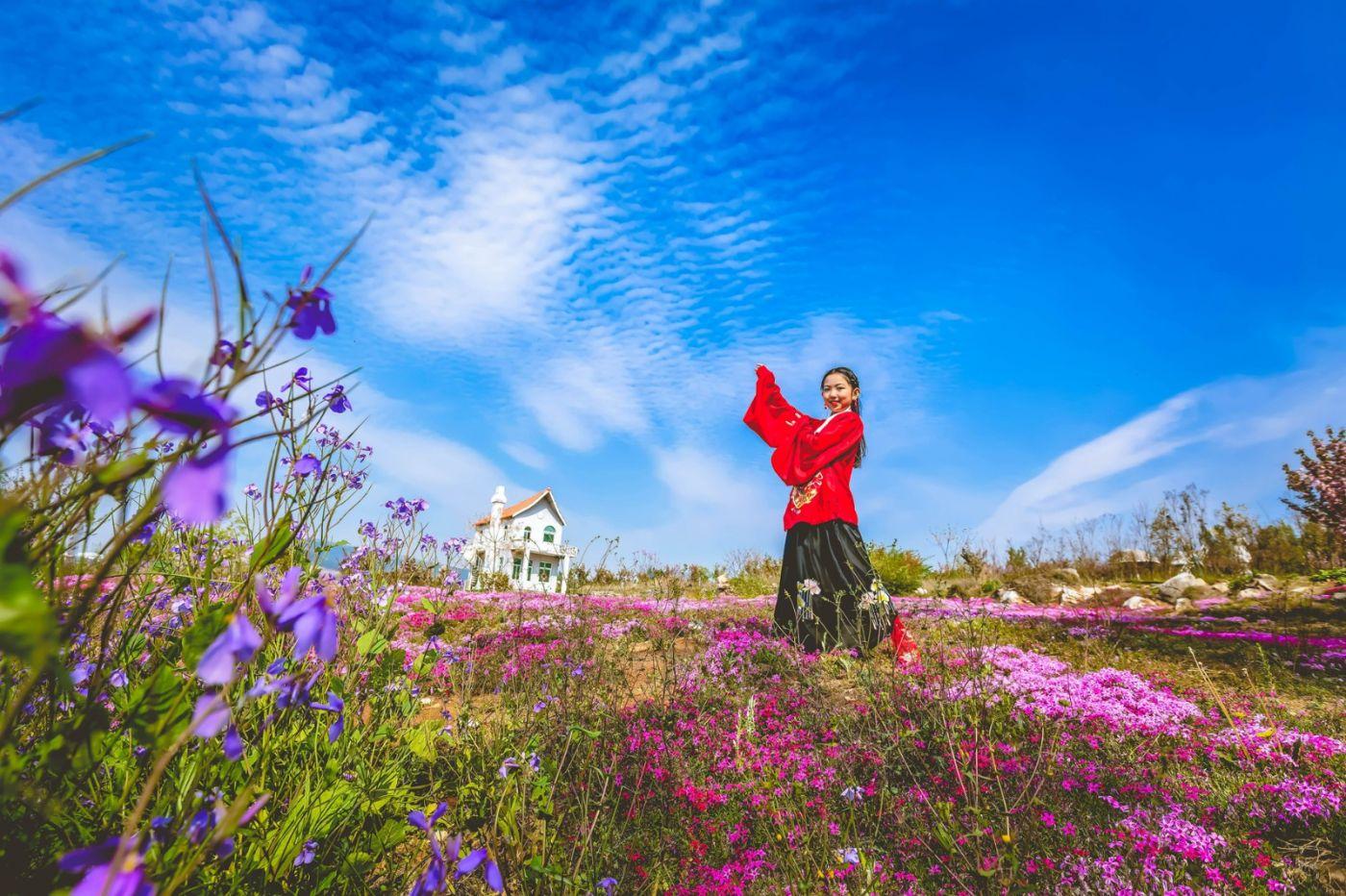 这个春天有点美 汉服仙子下凡尘 抓紧来临沂踏青赏花拍片片_图1-7