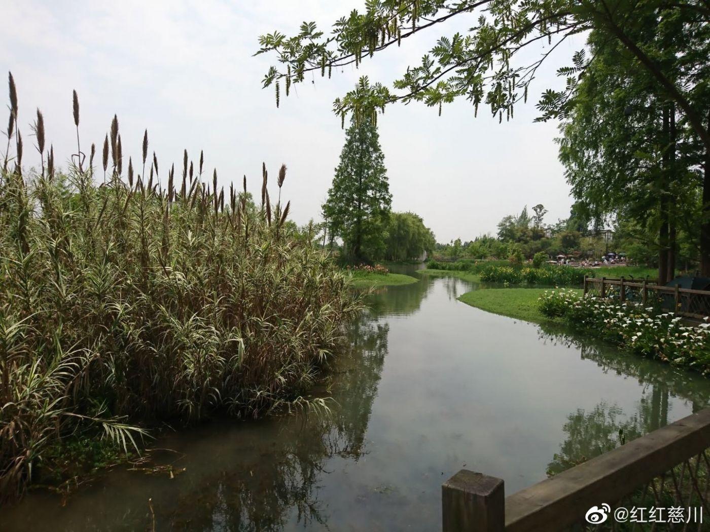成都幸福田园_图1-7