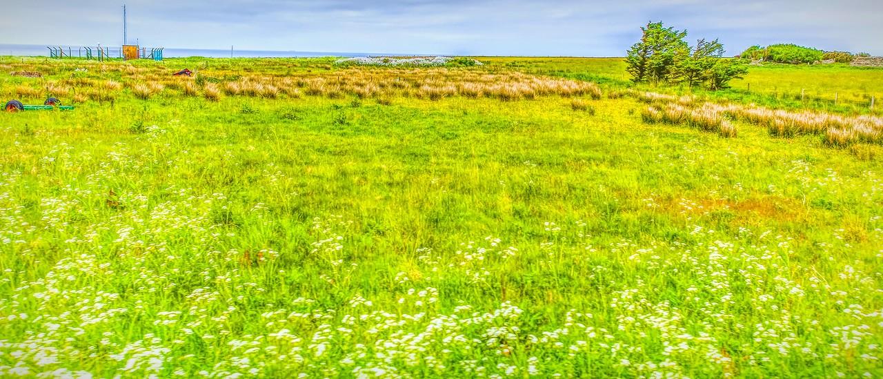 苏格兰美景,美的真实_图1-23