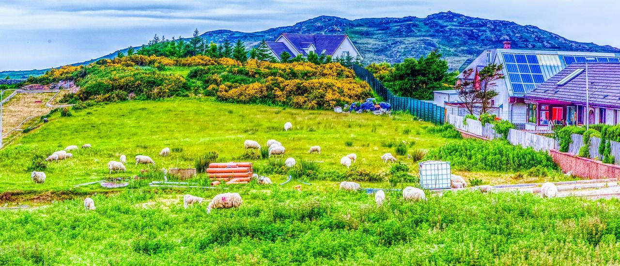 苏格兰美景,美的真实_图1-30