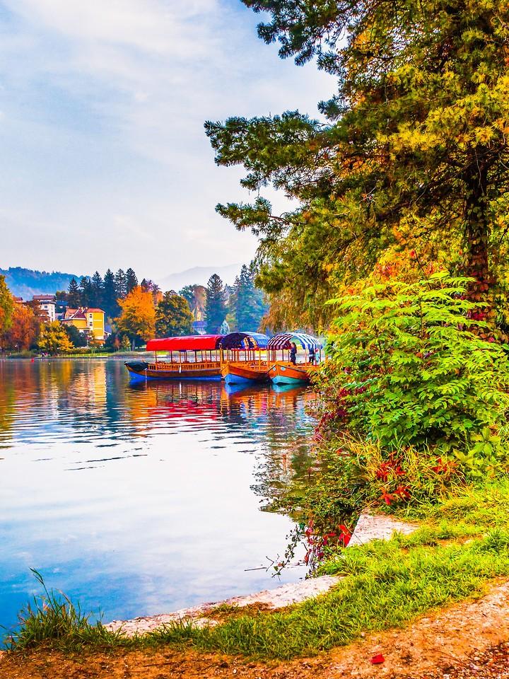 斯洛文尼亚布莱德湖(Lake Bled),清晨湖色_图1-14
