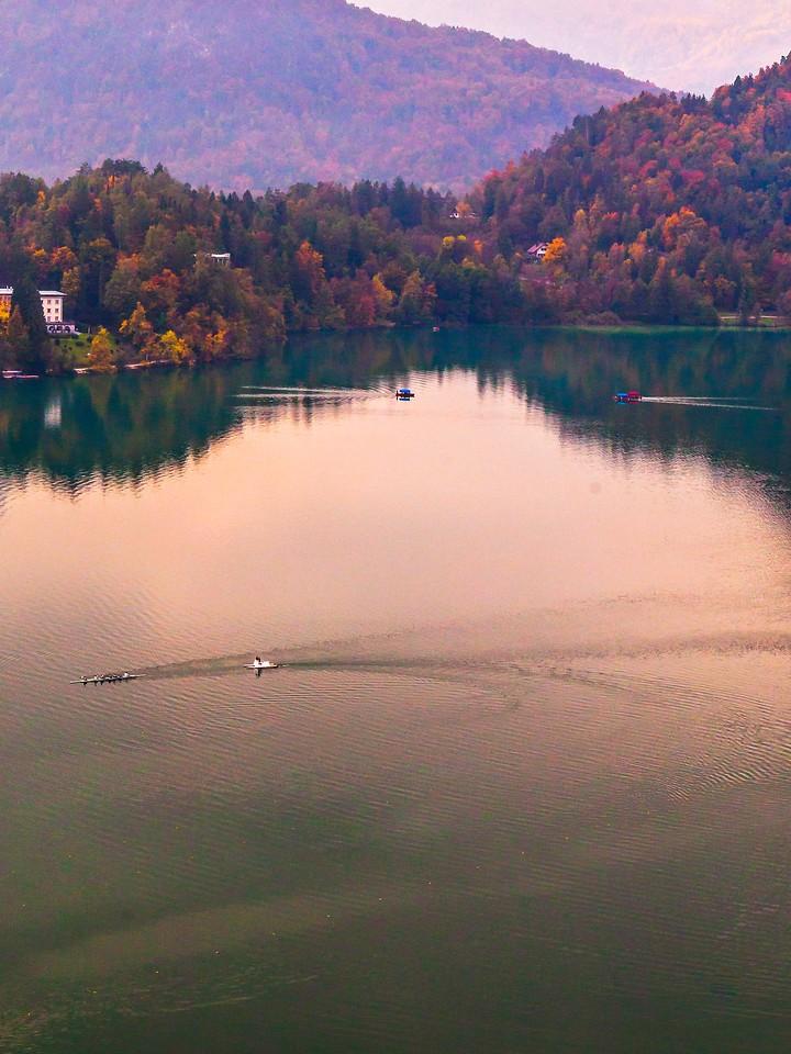 斯洛文尼亚布莱德湖(Lake Bled),清晨湖色_图1-35